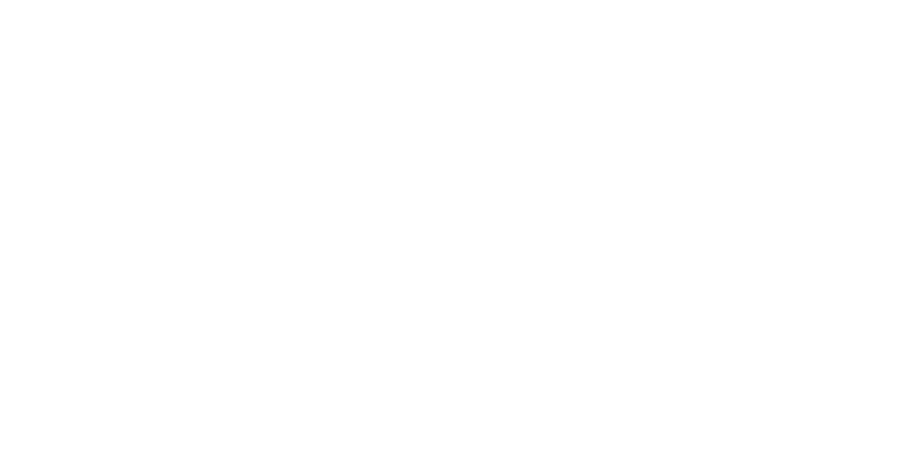 ELSA Italy